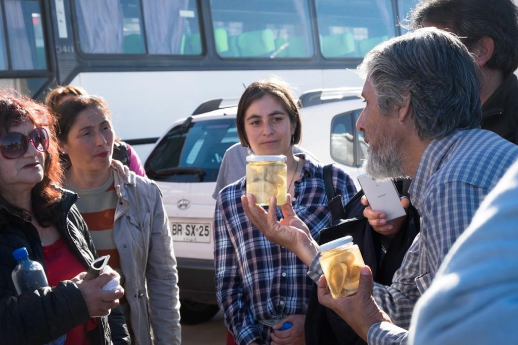 Tour gastronómico Los Vilos (38)